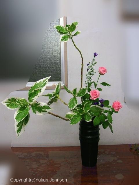 小原流 花意匠; 立てる形  瓶花;投げ入れ ;秋の花材