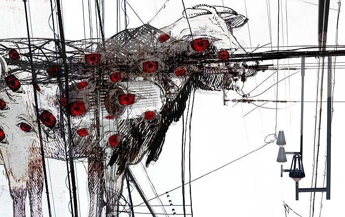牛と伝染と電線